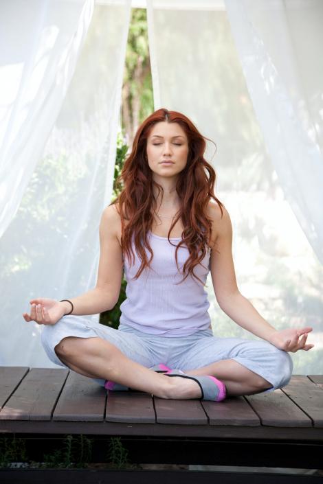 Yoga, Hatha Yoga